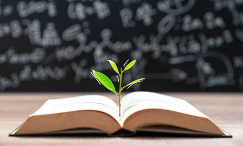 آیا با افزایش سطح تحصیلات پس انداز افزایش پیدا میکند؟